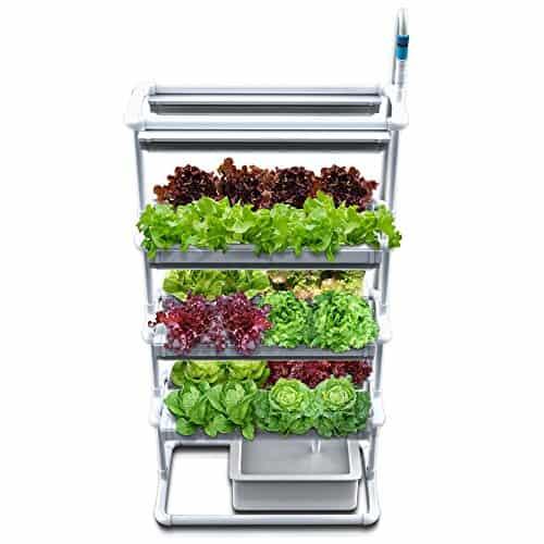 Hydroponics - Smart Gardening