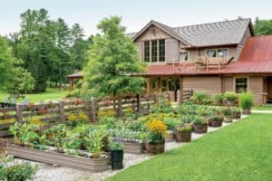 Top 10 Tips To Set Up Your Own Backyard Garden