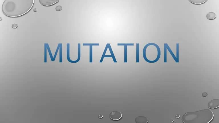 Mutation Records And Its Importance